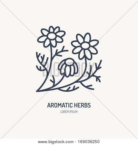 Chamomile vector line icon. Aromatic herbs logo, daisy chain sign. Linear illustration for natural camomile tea.
