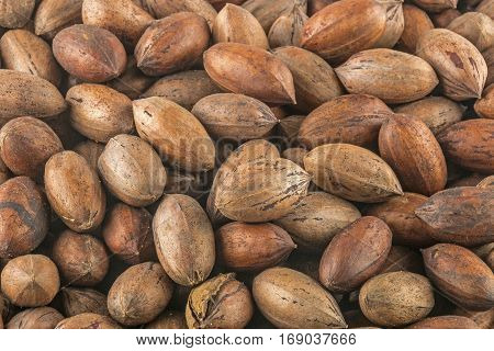 Close up above view of natural stack of peacan nuts patterns and textures