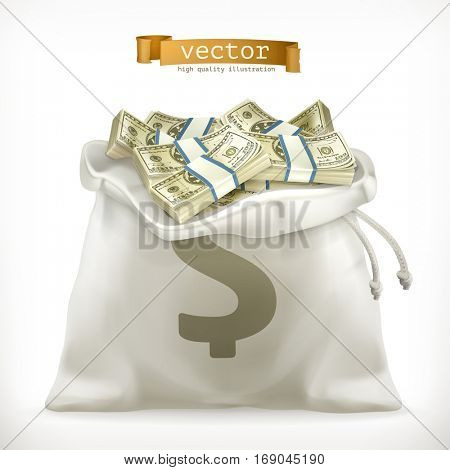 Moneybag. Paper money. 3d vector icon