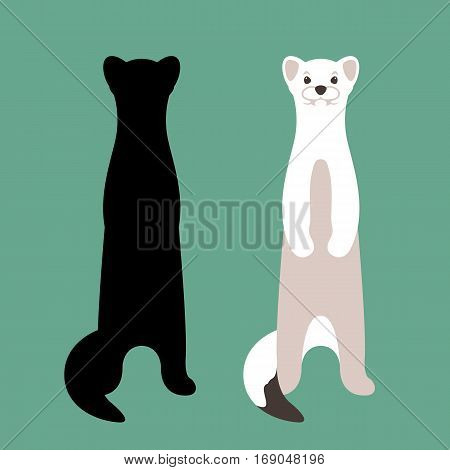 weasel vector illustration style Flat set silhouette