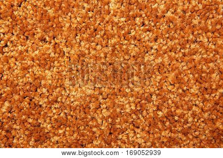 Shot Of A Carpeting Texture Background
