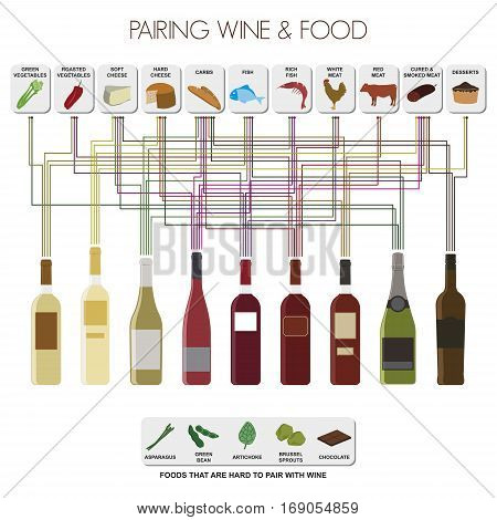 Infographics of pairing food and the most common wines