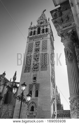 Sevilla (Andalucia Spain): courtyard of historic palace near the cathedral. Black and white