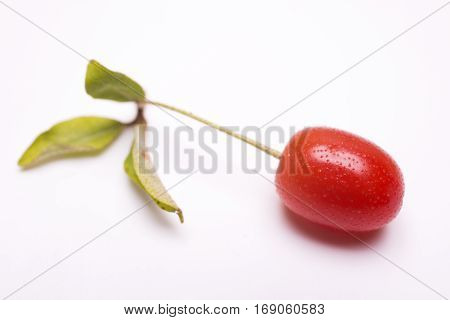 Vivid red cherry silverberry fruit(Elaeagnus multiflora var. gigantea) on white background