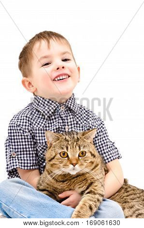Happy child hugging a cat Scottish Straight, isolated on white background