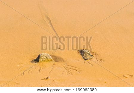 Two rocks buried in sand with traces of water runoff in the sand
