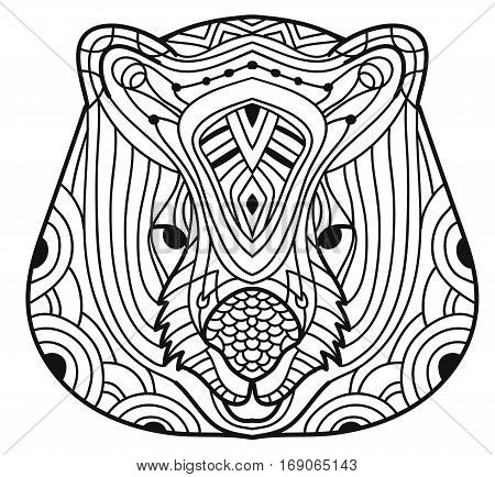 Animals of Australia. Wombat. Cute line drawing of a head of a wombat with patterns. Coloring book for adults. Ink drawing.