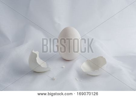 white egg and egg shell on vintage background.