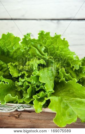Fresh Salad On A Vintage Tray On Wooden Background