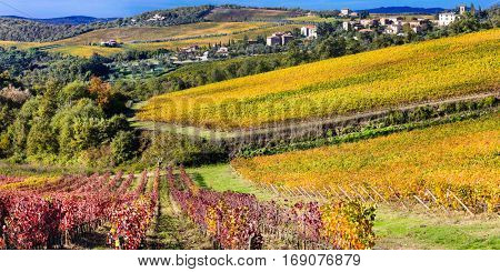 Beautiful Tuscany countryside -  wineyards in Chianti region, Italy
