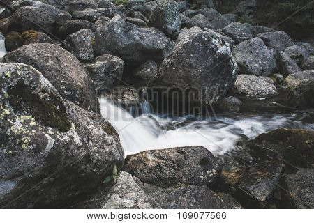 Forest stream, beautiful motion blurred water stream landscape. High Tatras, Slovakia