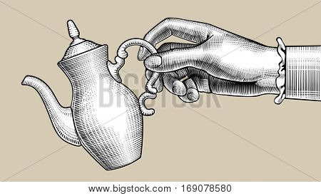 Woman's hand with a coffee pot. Vintage stylized drawing. Vector illustration