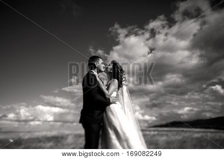 A Balck And White Picture Of Kissing Wedding Couple Standing On A Field Under Gorgeous Sky
