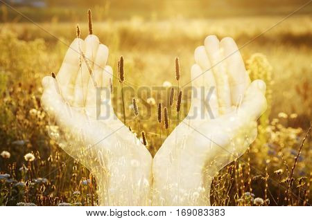 Image of hands and flowers created by using multiple exposure effect. Concept implies a care for the environment and its protection ecological compatibility of products etc
