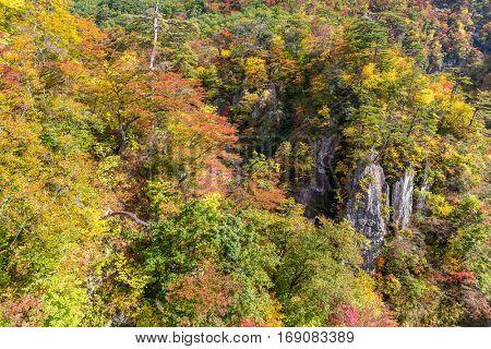 Naruko canyon of japan
