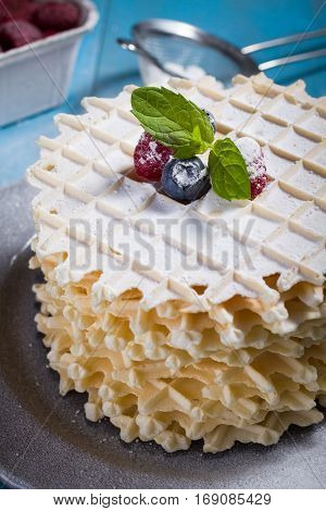 Belgian lush round waffles with fresh raspberries twigs and leaves minty in plate.