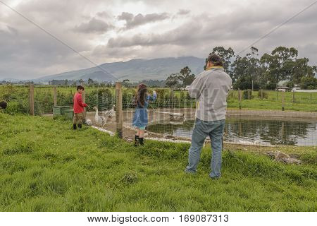 RIOBAMBA, ECUADOR, FEBRUARY - 2016 - Father with two children watching ducks at artificial pond with andes range mountains at background