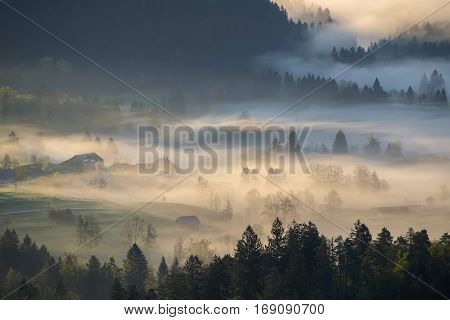 Foggy morning mist over alpine valley, Julian Alps, Slovenia