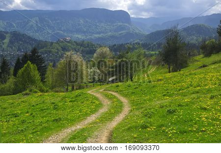 Curved dirt road in sunlit alpine valley at spring day near Bled, Slovenia