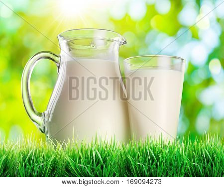 Jar of milk and glass of milk in the fresh green grass.