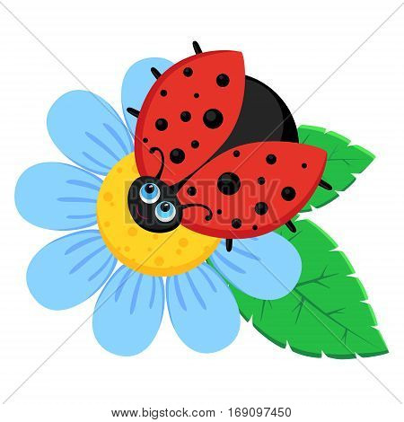 Vector illustration of  ladybird sits on blue flower