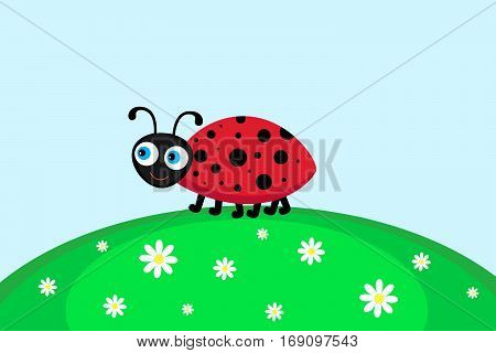 Vector  illustration of ladybird,  going for a walk on lawn