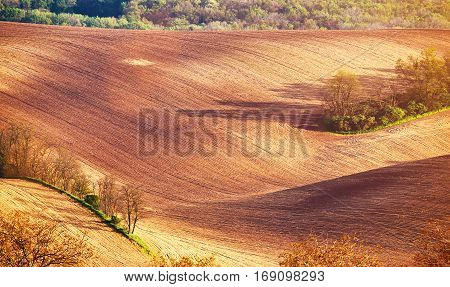 Abstract Pattern Texture Of Rolling Wavy Fields In Spring. Spring Arable Land