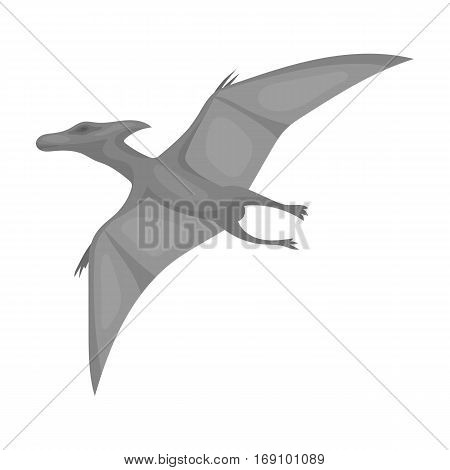 Dinosaur Pterodactyloidea icon in monochrome design isolated on white background. Dinosaurs and prehistoric symbol stock vector illustration.
