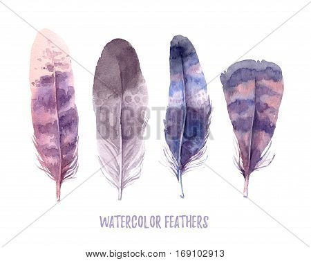 Hand Drawn Illustration - Watercolor Feathers Collection. Aquarelle Boho Set. Isolated On White Back