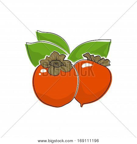 Orange Persimmon Isolated on White ,Tropical Fruit Persimmon