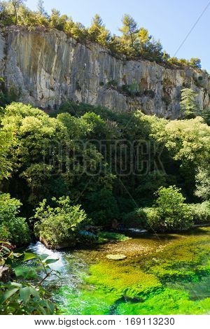 Emerald green flowing river water with seaweed river Sourge Fontaine-de-Vaucluse Provence France