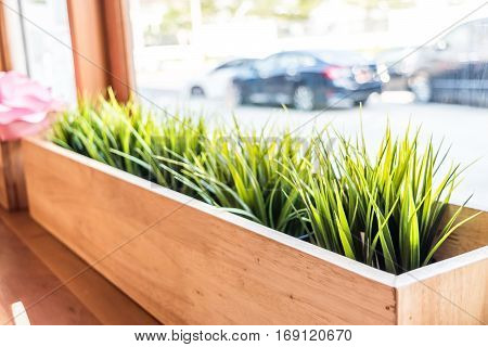 Cafe Decoration Style : Grass In Wooden Flowerpot In Restaurant