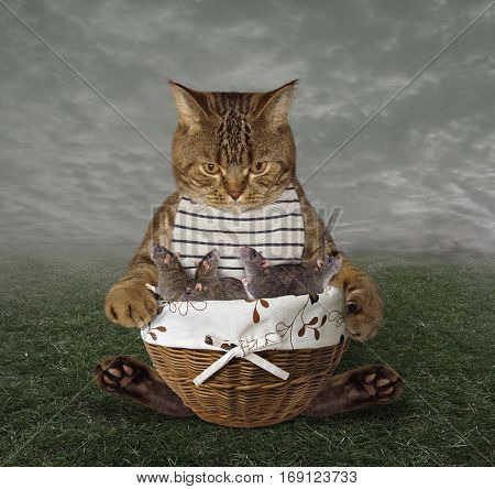 The cat is holding a big basket with mice. He is a real hunter.