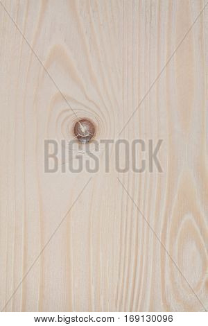 Beautiful high resolution blonde wood texture .