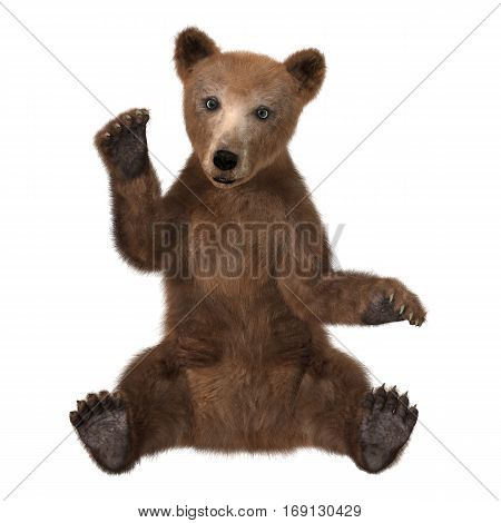 3D rendering of a brown bear cub isolated on white background