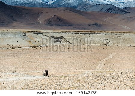 Young man holding his broken bicycle in the remote area on rugged road in himalaya range motion blur soft focus.