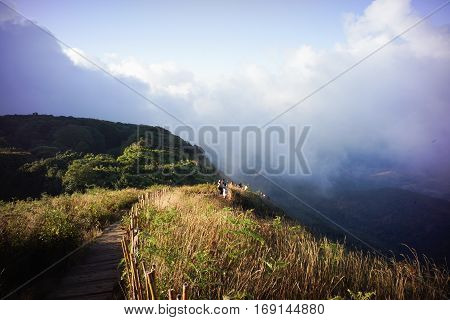 brown grassland on the mountain with mist ,Kew Mae Pan,Thailand