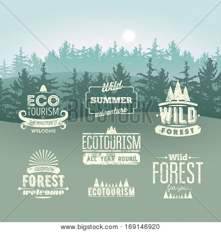 Wild Forest and Eco tourism typographic retro labels, vintage badges and logo signs on the background with fir trees landscape. Grunge Vector Set.