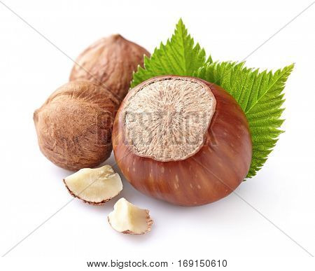 Hazelnuts with kernel in closeup