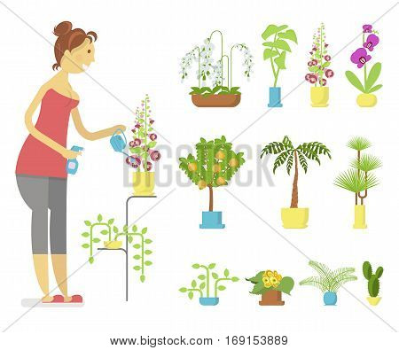 Window gardening infographic elements. Woman floriculturist takes care of indoor flowers. Vector set of flat illustration of horticultural sundry, house plants and flowers in pots. EPS 10