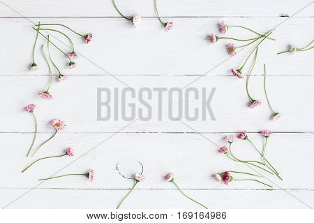 frame of daisy flowers on wooden white background top view flat lay