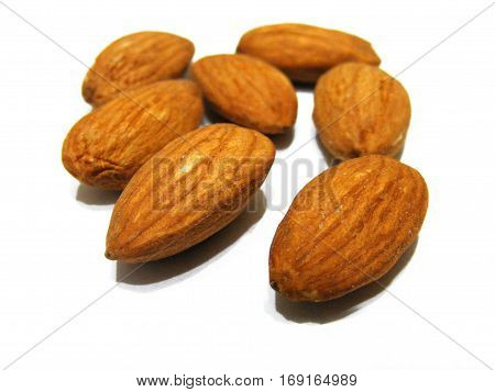 Beautiful and high quality dry almond paintings