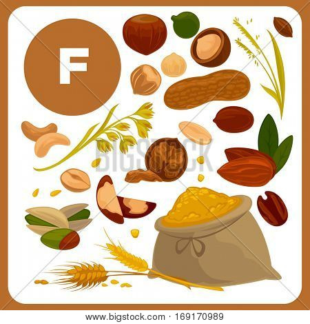 Set with illustrations of food with vitamin F. Ingredients for skin health. Healthy nutrition, diet with product F sources. Vector icons in cartoon design, isolated on white background