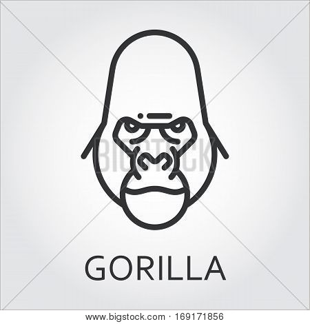 Black flat simple icon style line art. Outline symbol with stylized image of a head of a wild animal ape, gorilla. Stroke vector logo mono linear pictogram web graphics. On a gray background.