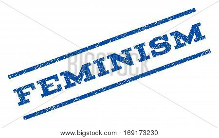 Feminism watermark stamp. Text tag between parallel lines with grunge design style. Rotated rubber seal stamp with unclean texture. Vector blue ink imprint on a white background.