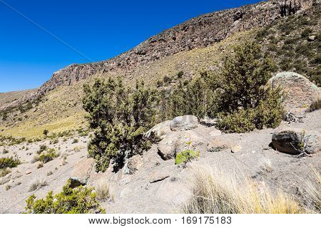 Landscape Of An Arid Valley In The Andean Highlands