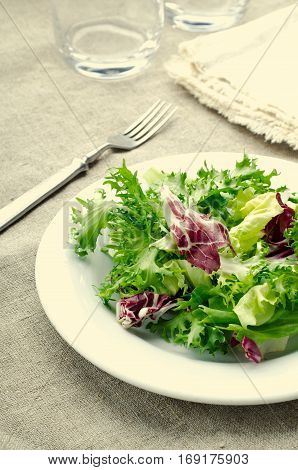 Green salad with spinach, frisee, arugula and radicchio on blue wooden background, vertical, toned