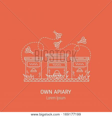 Own apiary made in line style vector isolated on background. Apiary line art illustration. Natural product concept.