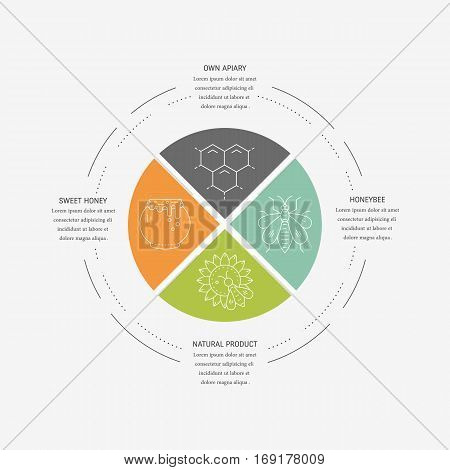 Line vector concept with honeybee sunflower jar and honeycomb with place for text . Perfect design for infographic.