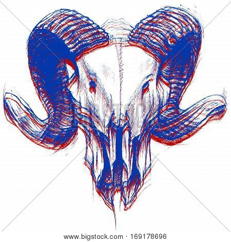 Ram Skull drawing line work in conceptual 3D. Vector for use.
